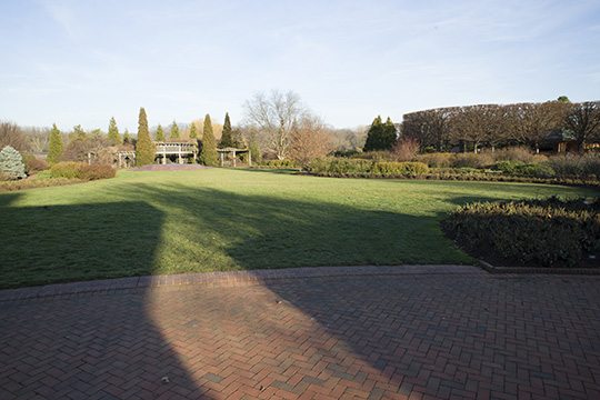 View 3: The Rose Garden in winter
