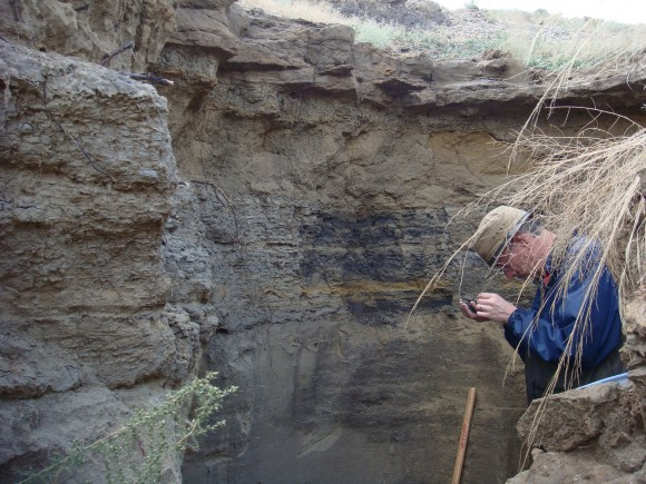 PHOTO: Pat Herendeen examines fossil evidence from an exposed sub-terranian rock face.