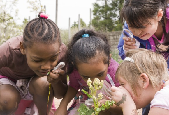 PHOTO: Girls gather in the vegetables on a field trip to Fruit & Veg.