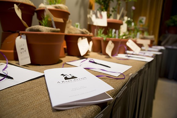 PHOTO: Bidsheets and plants at A Rare Affair.