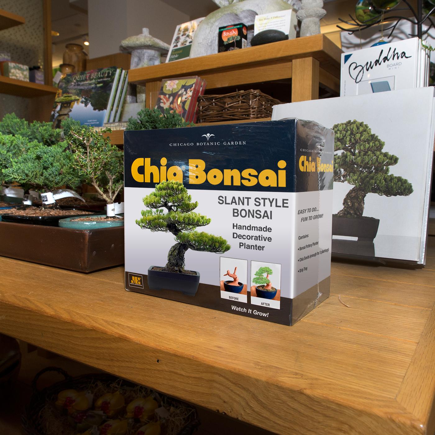PHOTO: Chia Bonsai box.