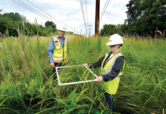 ComEd employees use a frame built of PVC pipe to measure a number of plants in a given square foot of prairie.