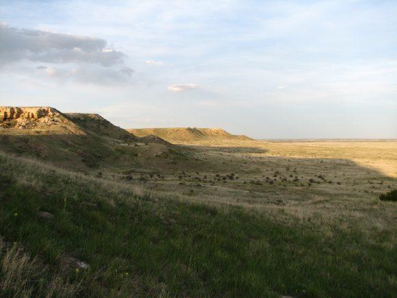 Comanche National Grasslands, Colorado— the shortgrass prairie where the study was conducted. (Photo: K. Skogen)