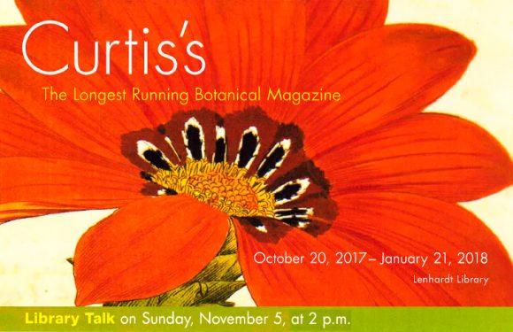 Library Talk on Sunday, November 5, at 2 p.m.
