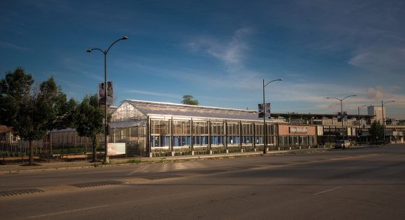 The new Farm on Ogden in Chicago