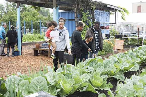 In the outdoor beds at Farm on Ogden, visitors admire the next crop to be harvested.