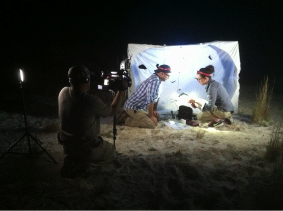 """PHOTO: Filming the episode in the dark. The moth trap provides a backlight for the """"cast."""""""