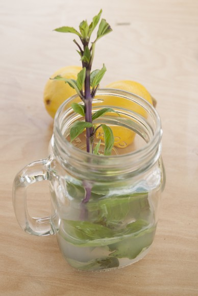 A sprig of basil tops off a mason jar basil lemonade.