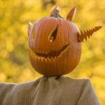PHOTO: Jack-o-Lantern scarecrow.