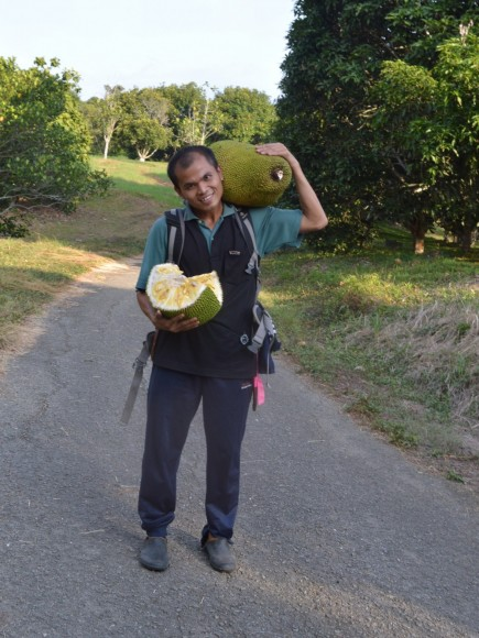 PHOTO: Jeisn Jumian with a huge jackfruit over one shoulder, and a cut jackfruit in his other arm.