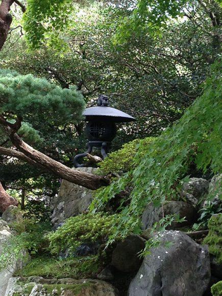 PHOTO: Japanese lantern.