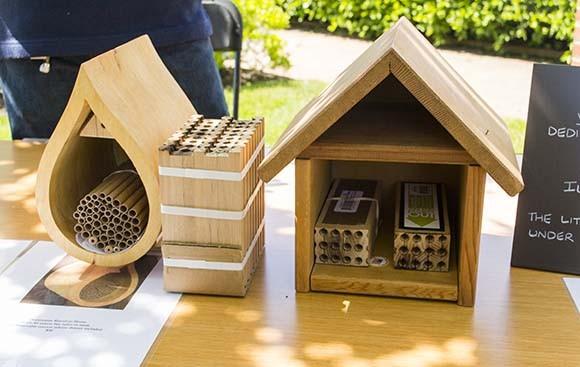 Mason and native bee houses.