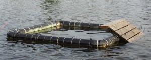 PHOTO: Floating trap for basking turtles.
