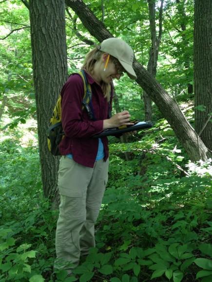 Rachel Goad monitors rare plants in a ravine.