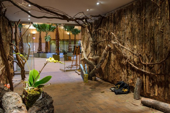 PHOTO: Pine bark lines the walls of a hallway, and vines and creepers stretch across the ceiling.