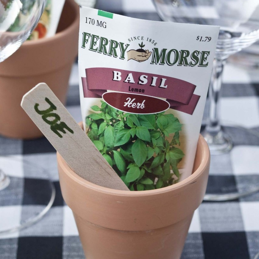 "PHOTO: a small plant pot with seed packet and row marker labelled, ""Joe"" is used as a name card at the table."