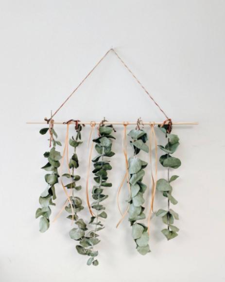 January's Gardening for Life Enrichment project: Eucalyptus Sensory Mobile.