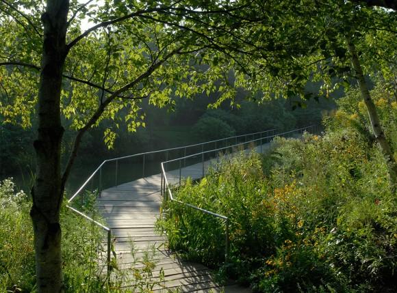 PHOTO: Spider Island boardwalk.