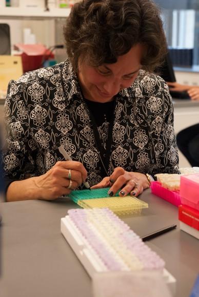 PHOTO: Volunteer Eileen Sirkin.
