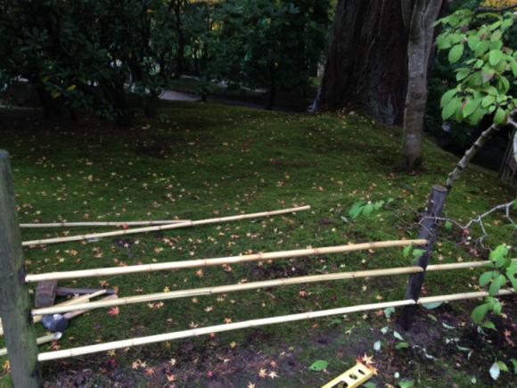 PHOTO: Building yotsume-gaki (tea garden fence).