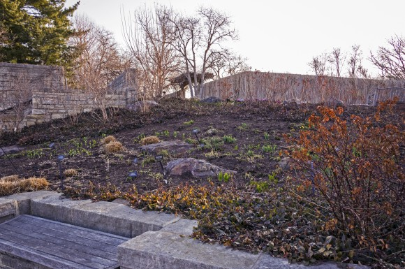 PHOTO: View of the Bulb Garden.