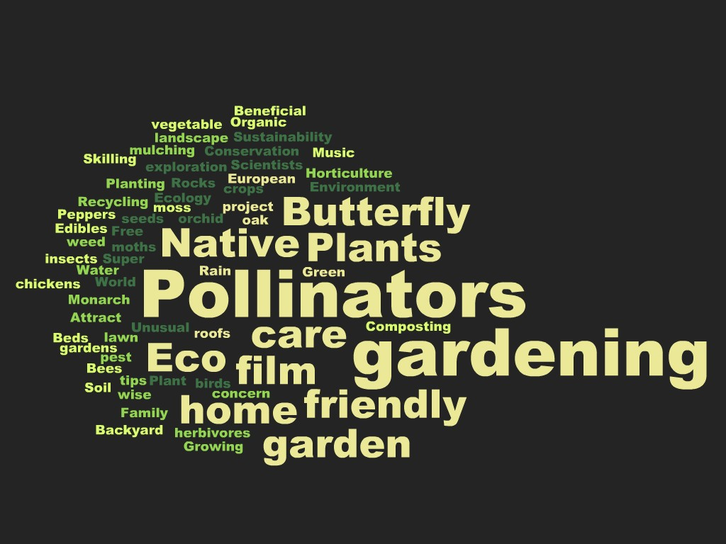 """""""Word Cloud"""" graphic of the top themes of World Environment Day."""
