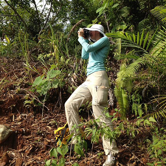 Nyree Zerega studies evolution/genomics in underutilized tropical fruit trees and their wild relatives to promote and conserve food diversity.