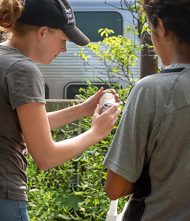 Pollinator Collection Near the Metra with Andrea