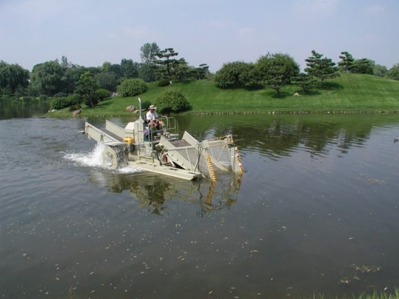 PHOTO: The Garden's aquatic plant harvester cuts and removes excessive aquatic vegetation and algae from the Garden lakes.