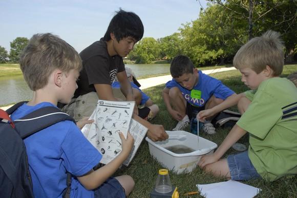 PHOTO: Camp CBG boys study lake water.