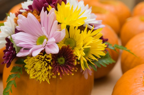 PHOTO: A pumpkin planted with a selection of fall mums.