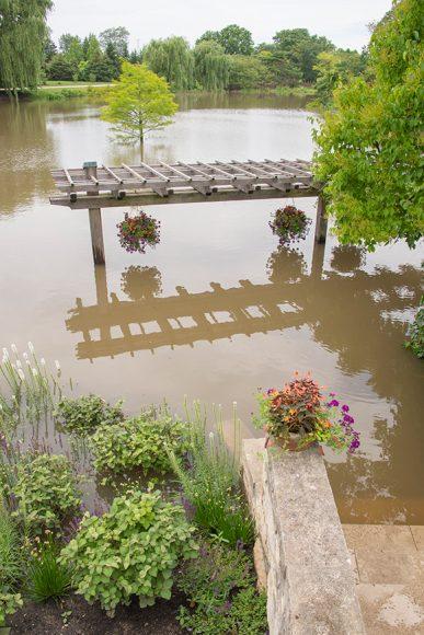 The lower walkway pergola in the Bulb Garden on July 13, 2017