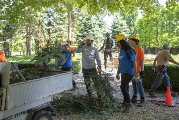 Conservation Corps teens removed stumps
