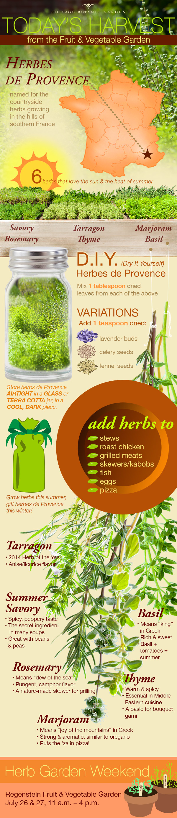 An infographic on cultivating the herbs of Herbs de Provence.