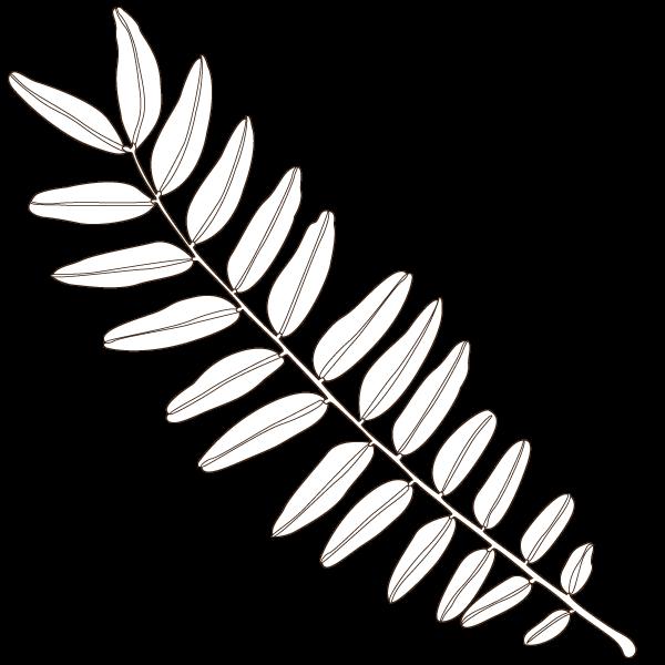 honeylocust leaf