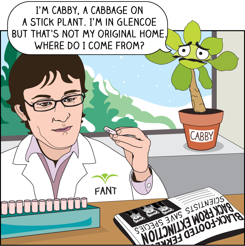 Plant Science and Conservation