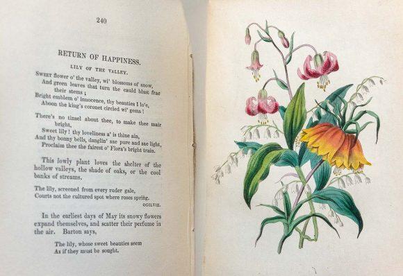 Poem and illustration from Madame de la Tour's Langage des Fleurs