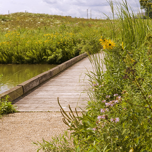 The boardwalk to Marsh Island.