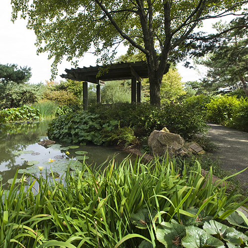 PHOTO: Arbor at the top of the Waterfall Garden.