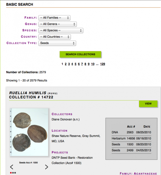 PHOTO: Collections database search results screen.