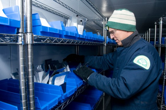 PHOTO: David Sollenberger in a large, walk-in freezer room. He's wearing winter gear and a knit cap.