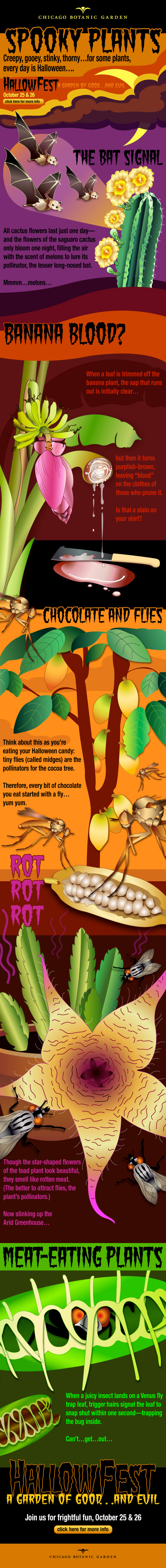 Spookygraphic: an infographic about spooky plants