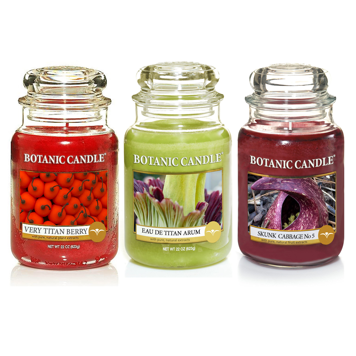 Stinkin' Cool! New Designer Scents from Botanic Candle