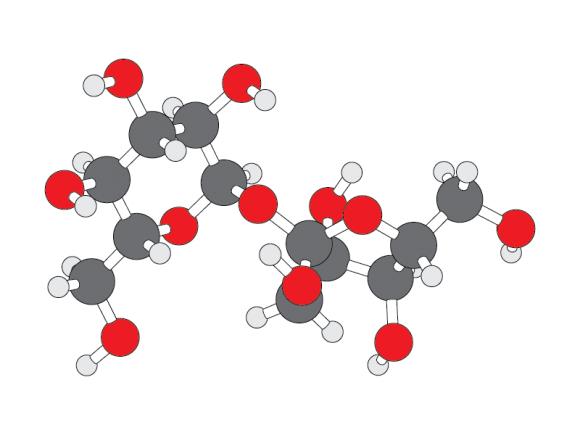ILLUSTRATION: Sucrose molecule.